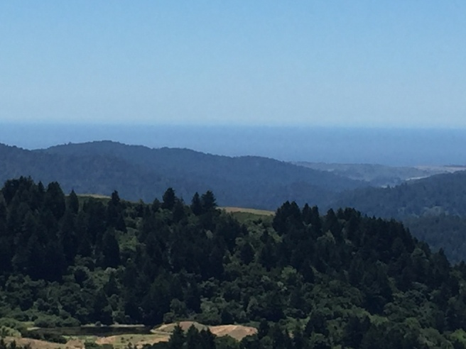 Santa Cruz mountains to the Pacific